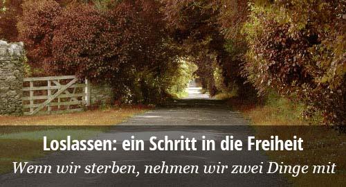 Reshad Feild: Loslassen. Schritte in die Freiheit.