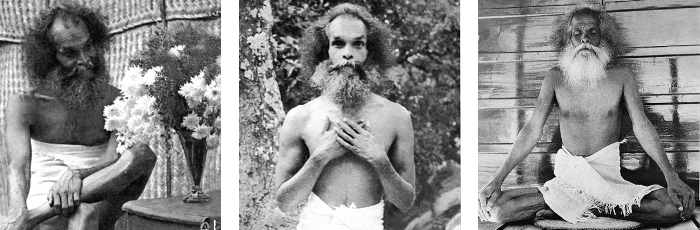 Shivapuri Baba