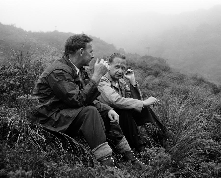 Dag Hammarskjöld, 1956 Neuseeland