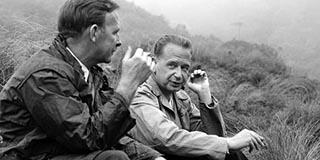 Dag Hammarskjöld, Neuseeland